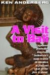 Bali book cover